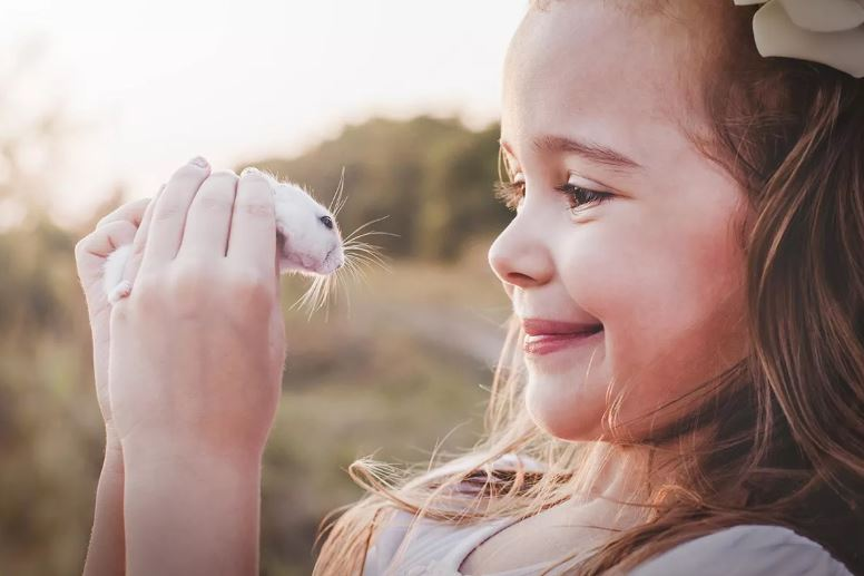 10 OF THE BEST LOW MAINTENANCE PETS FOR KIDS